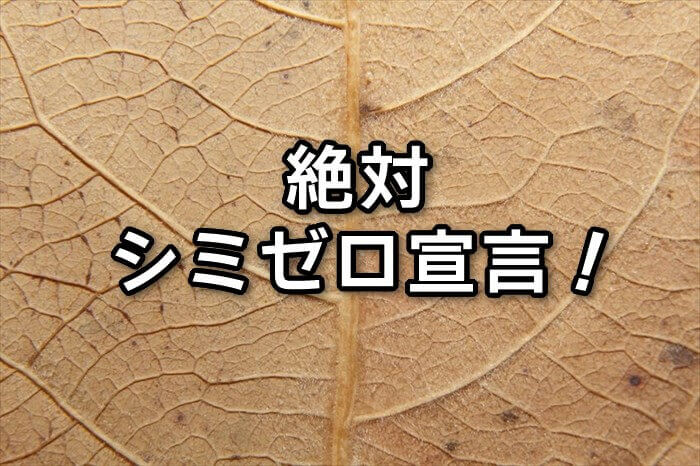 出来てしまったシミを消したい!今すぐできる対策と根本改善