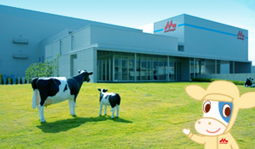 森永乳業 工場見学