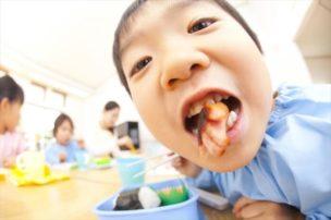 お弁当に潜む危険!子供を食中毒から守る3つの予防ポイント5つの対策
